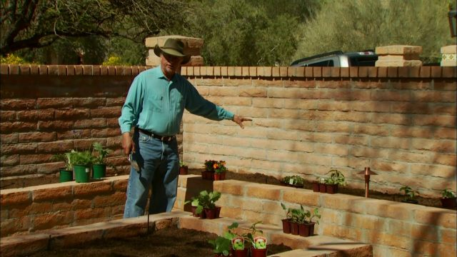 DIY – How to Plant a Raised Vegetable Garden in the Desert