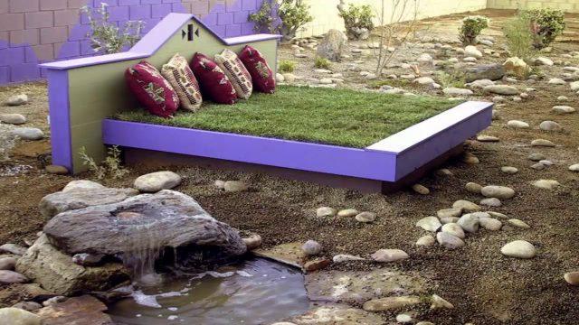 Desert Garden Design