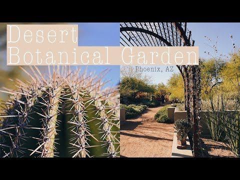 Desert Botanical Garden // Phoenix, AZ // Free Day