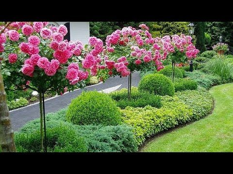 Beautiful flower garden landscaping ideas