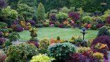 Best ideas! – Top 80 Garden Small Backyard Landscaping | Beautiful Gardens Ideas