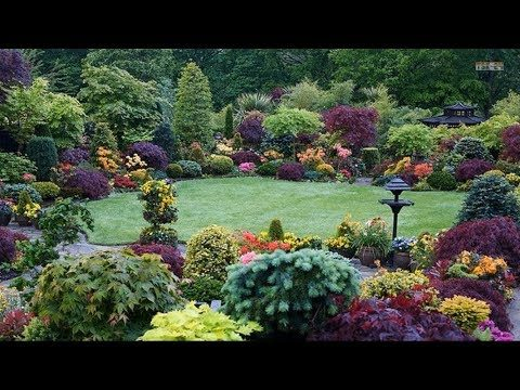 Best ideas! – Top 80 Garden Small Backyard Landscaping | Beautiful Gardens Ideas