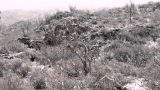 Snowy Hill in the Chihuahuan Desert
