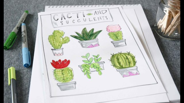 Let's Draw! Cacti + Succulents