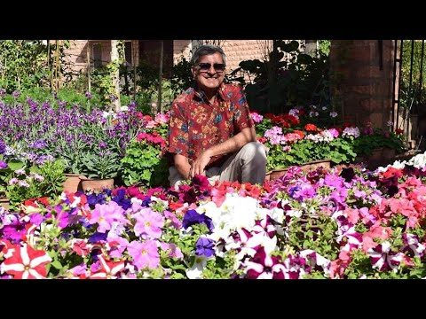 THE VALLEY OF FLOWERS IN DESERT/ GARDEN OF RAVINDRA KABRA uncle  / GOKUL THE VALLEYS OF FLOWER
