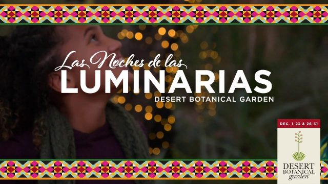 Celebrate the Arizona Holiday Light Tradition of Las Noches de las Luminarias