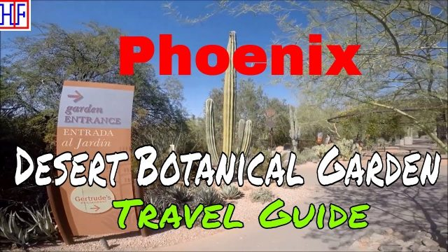 Phoenix, AZ | Desert Botanical Garden (TRAVEL GUIDE) | Episode# 7