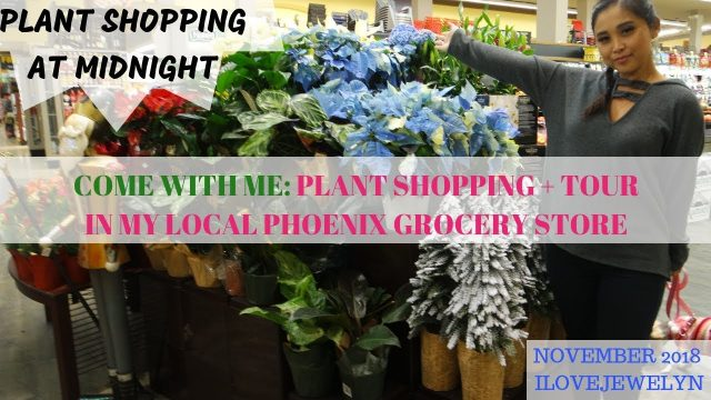 Come with me: Grocery Store Plant shopping + tour | Phoenix, Arizona | November  2018 | ILOVEJEWELYN