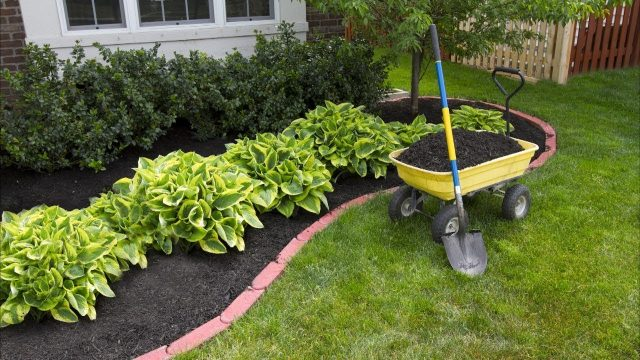 27 Front Yard Landscaping Ideas