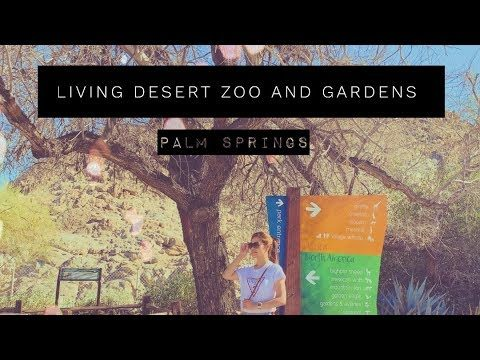 LIVING DESERT  ZOO AND GARDENS  AT PALM SPRINGS CA