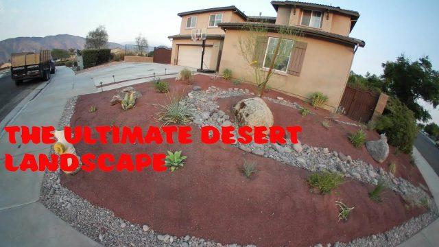 The ultimate desert landscape (Permaculture desertscape)