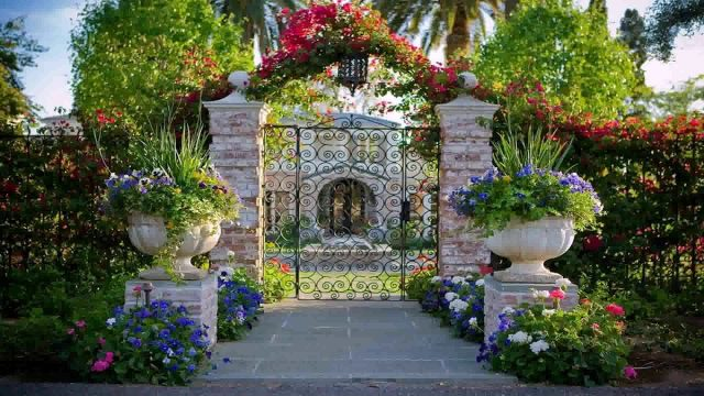 Landscape Design Phoenix Arizona