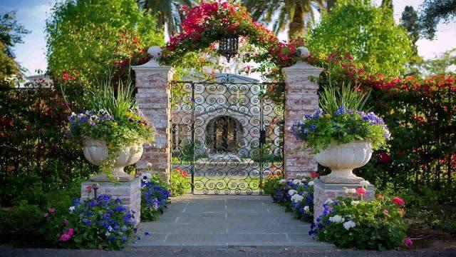 Landscape Design Phoenix Arizona