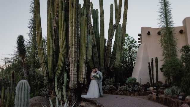 Desert Botanical Garden, AZ | Minimal Wedding Film