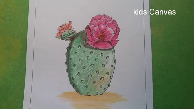 How to draw a cactus plant, desert plant drawing, colour pencil shading for beginners and kids