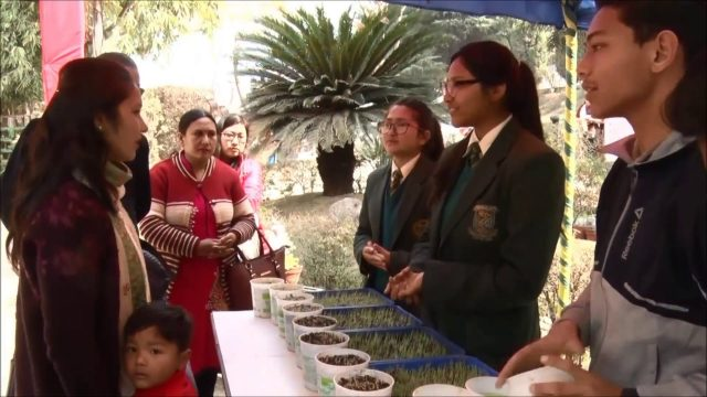 Botanical Garden, prepared by the students of Gyanodaya.