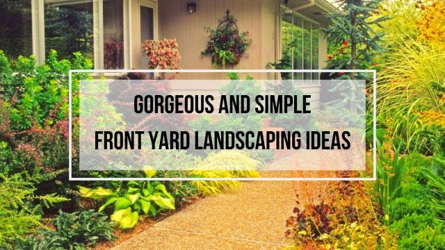 Gorgeous And Simple Front Yard Landscaping Ideas