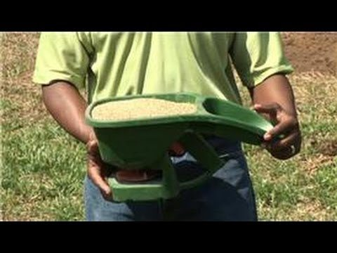 Grass & Lawn Care : How to Grow Grass in Drought Conditions