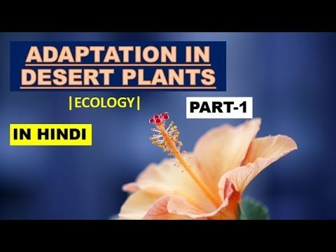 ADAPTATION IN DESERT PLANTS (PART-1)| CSIR NET |ECOLOGY (In Hindi)