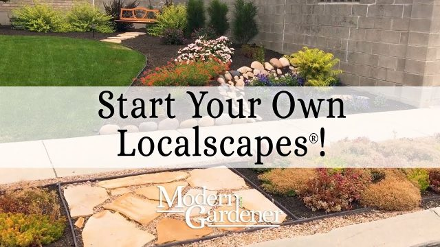 How to start landscaping with Localscapes® | Modern Gardener