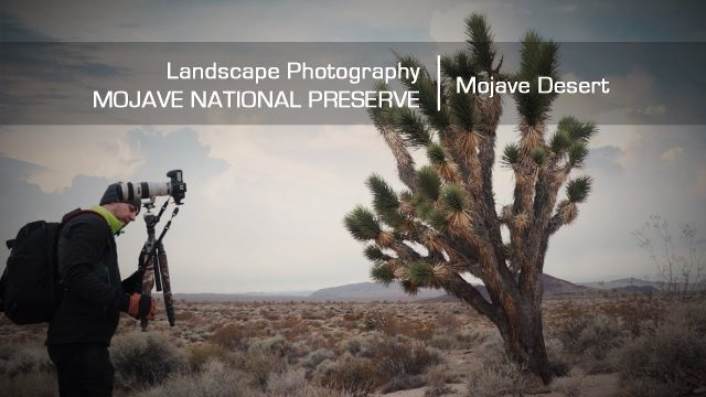 Mojave National Preserve Day 1 – Landscape Photography