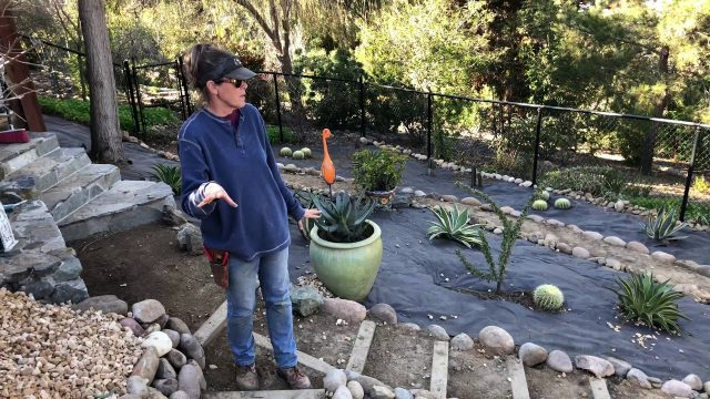 Day Two of a Massive Xeriscape Slope Installation