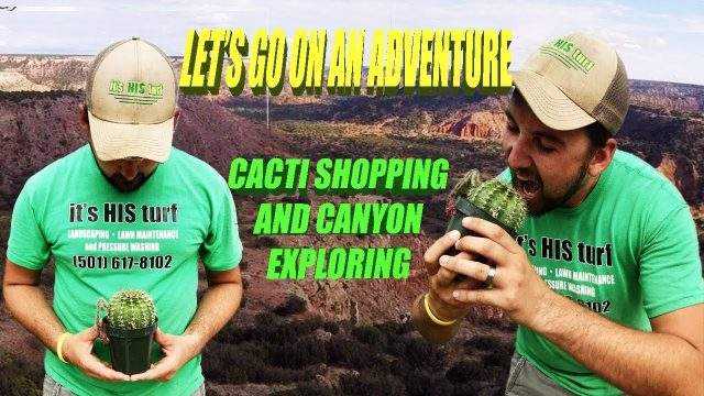 Landscape Adventure Time and Cactus Smuggling in Texas