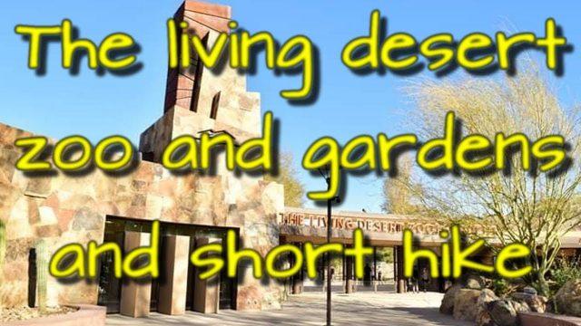 The Living Desert Zoo Gardens and hike