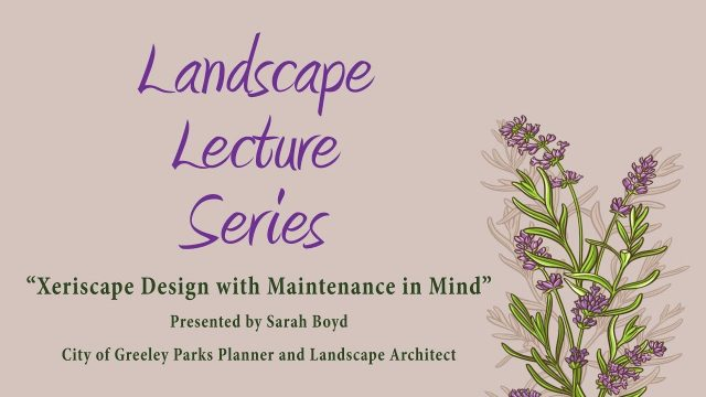 Xeriscape Design with Maintenance in Mind – Landscape Lecture Series