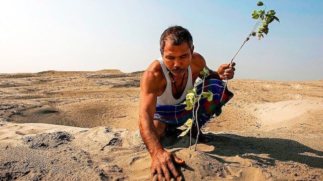 People Were Laughing At Him Planting Trees In The Desert, And This Is What Happened Next…