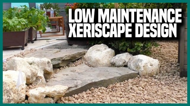 Drought Tolerant & Low Maintenance Xeriscape Landscape Design | Earth Works Jax
