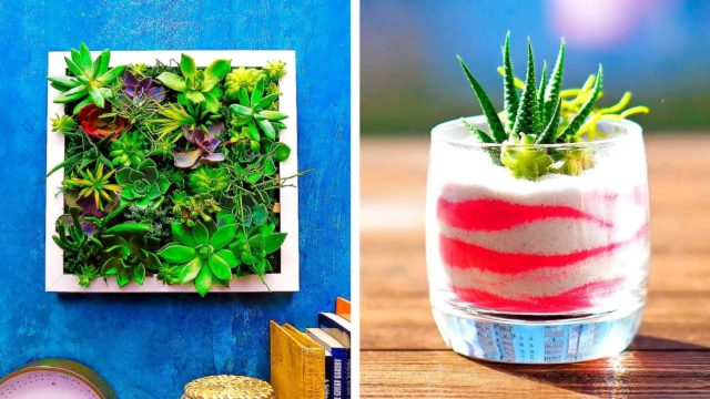 20 CREATIVE DECOR IDEAS WITH PLANTS
