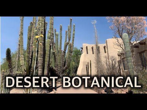 Phoenix Arizona Desert Botanical Garden