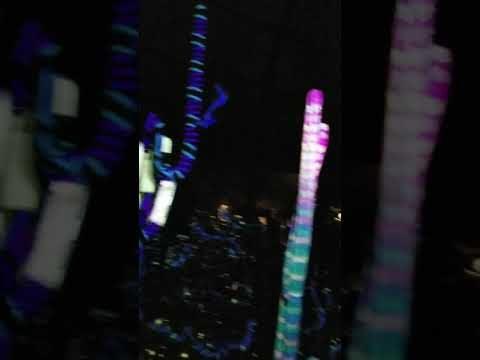 THE BOTANICAL GARDENS AT NIGHT!  PHOENIX, AZ