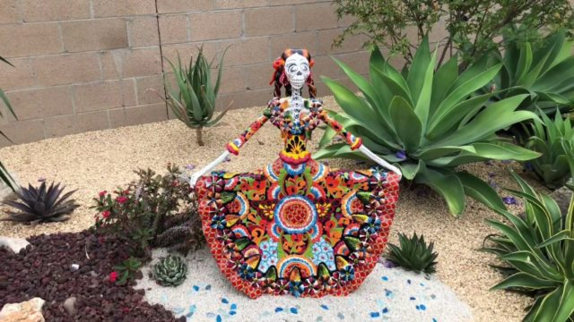 Cactus and Succulent Garden Installation Grand Reveal in Tustin