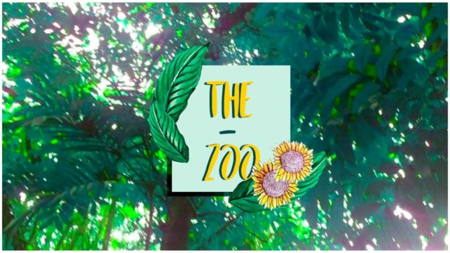NALIS CAMERAROLL X THE ZOO & BOTANICAL GARDEN ♡