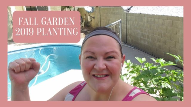 2019 Fall Planting in full effect in our Desert Garden Wk 24