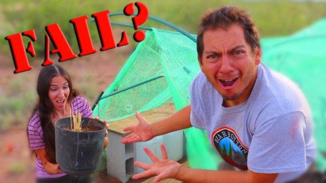 Our OFF-GRID Garden Troubles   Secret Gardener Seed Challenge Video 2