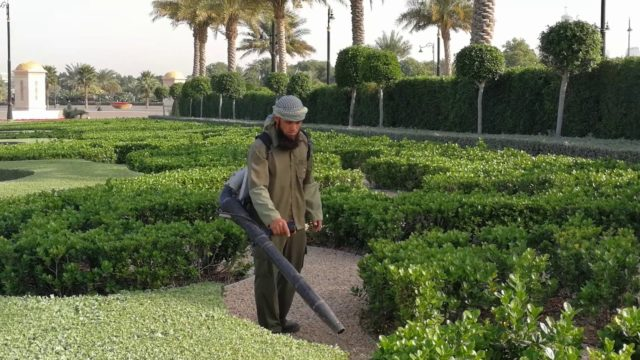 Gardener at work at Zaabeel Palace in Dubai 16.02.2018