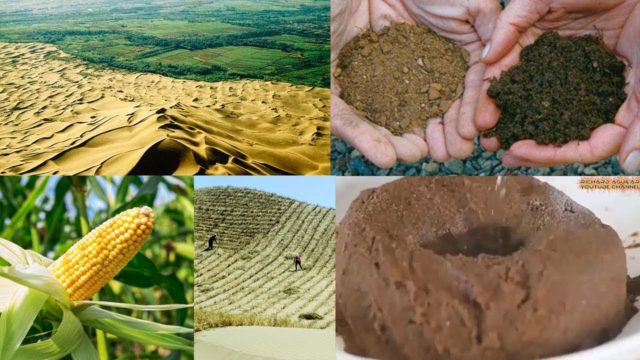 Watch How China Transforms Desert Into Productive Land By Converting Desert Sand Into Soil