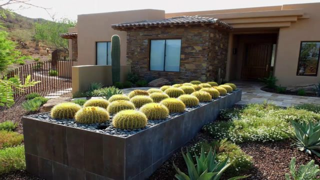 Home Cactus Garden Design Ideas – Nadin Decor