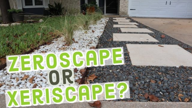 How to Zeroscape a Yard – Or is it Xeriscape?