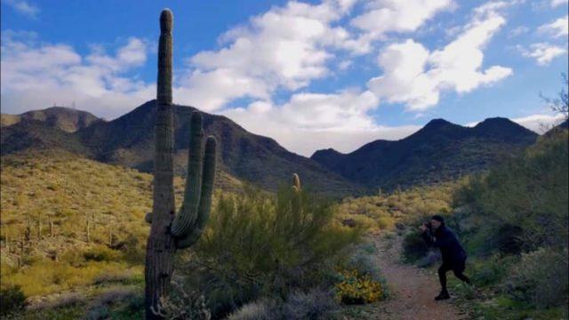 Hiking Adventures – Exploring The Arizona Desert
