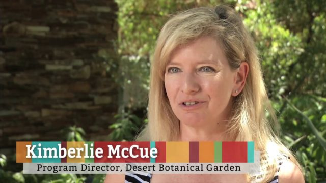 Recycled City, Desert Botanical Garden I Reimagine PHX