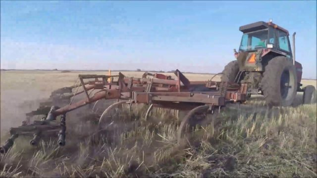 Tillage on a Prairie Desert – Plant 19
