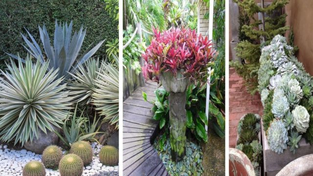 12+Eye Catching Garden Landscaping To Make Your Day