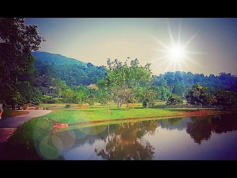Strolling in scenic FRIM Botanic Garden 🌲🌺★Flora★ ★Nature★