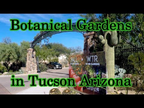 Botanical Gardens in Tucson Arizona
