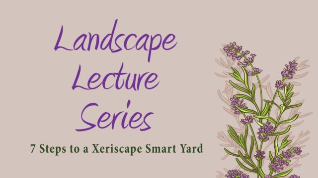 7 Steps to a Xeriscape Smart Yard – Landscape Lecture Series