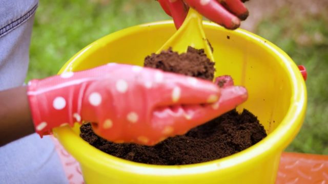 Garden Series: Starting with the right soil